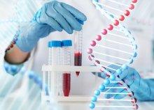 Élő vércseppanalízis Candida-teszttel