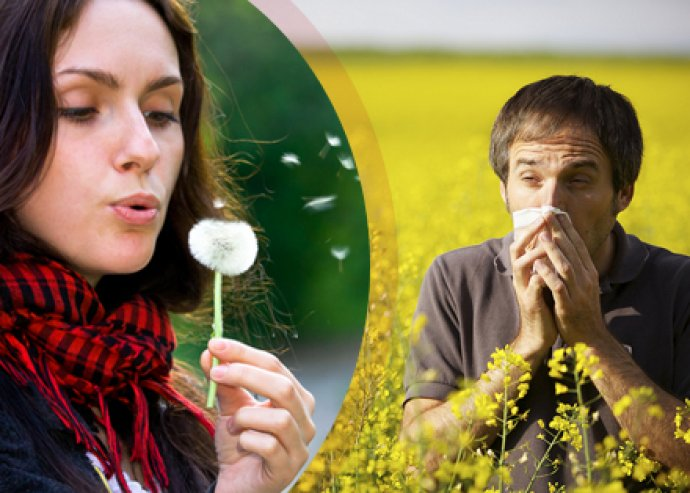 Magneter allergia kezelés + lézeres fülakupunktúra a Gyógyerő Központban