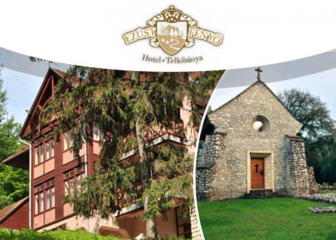 6 nap / 5 éj családi nyaralás két felnőtt + 2 gyerek részére a csodálatos Zemplénben, az Ezüstfenyő Hotelben