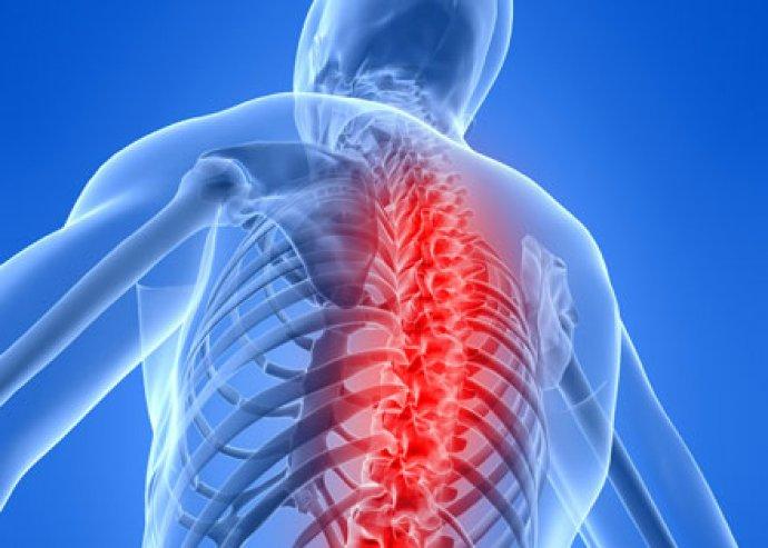 3 alkalmas denevérpados gerincnyújtó pad kezelés