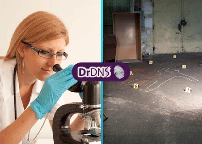 DrDNS helyszínelők program a volt Csepel Műveknél