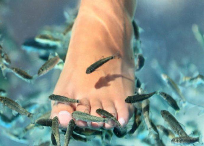 Variációk halpedikűrre, lábmasszázs, tea