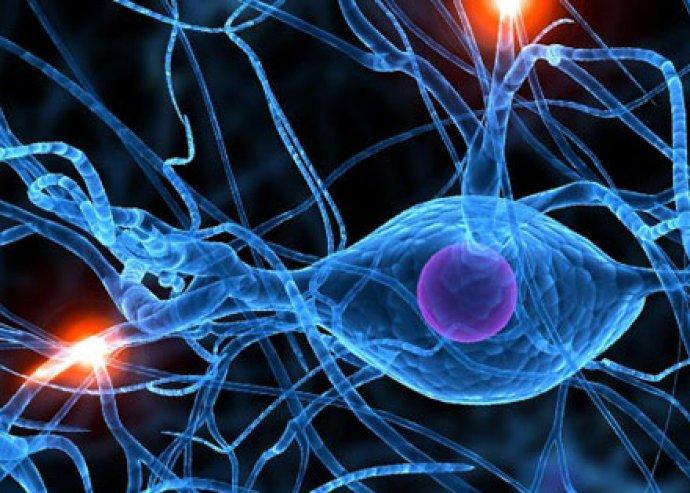 Biorezonanciás egészségügyi állapotfelmérés, hogy tisztában lehess szervezeted állapotával