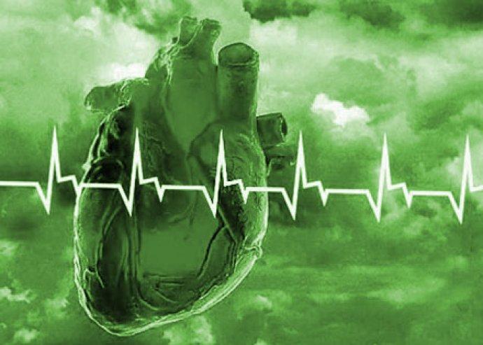 AMP Vizsgálat, menedzser-szűrés 117 élettani paraméterre, életmód-táplálkozási tanácsadás, mozgásterápia