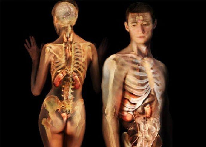 Endokrinológiai állapotfelmérés+2alkalmas lézerterápia