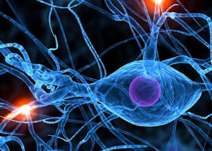 Térképezd fel szervezeted állapotát biorezonanciás egészségügyi állapotfelméréssel