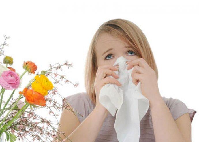 Figyelj tested jelzéseire! 700 pontos allergiavizsgálat + 10% kedvezmény a Király Herbária Gyógynövényboltban!