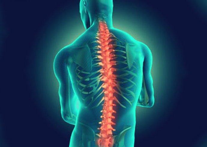 Egységben test és lélek - Gerinc diagnosztikai vizsgálat és kezelés Trigger pont terápiával