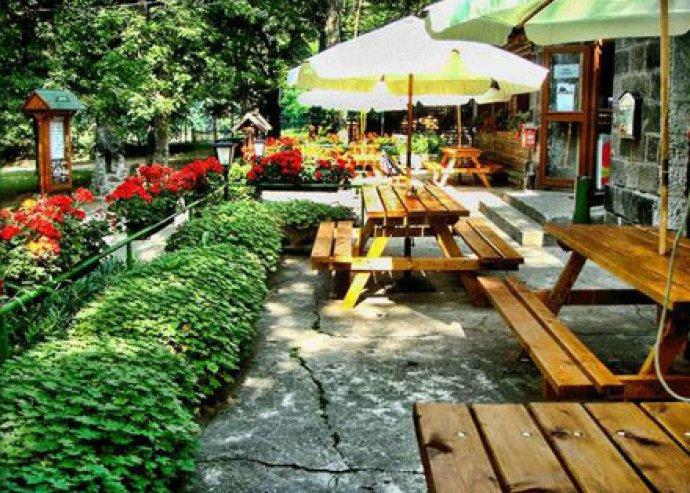 Torkos hétköznapok Dobogókőn - ebéd vagy vacsora féláron 2 étterem egyikében