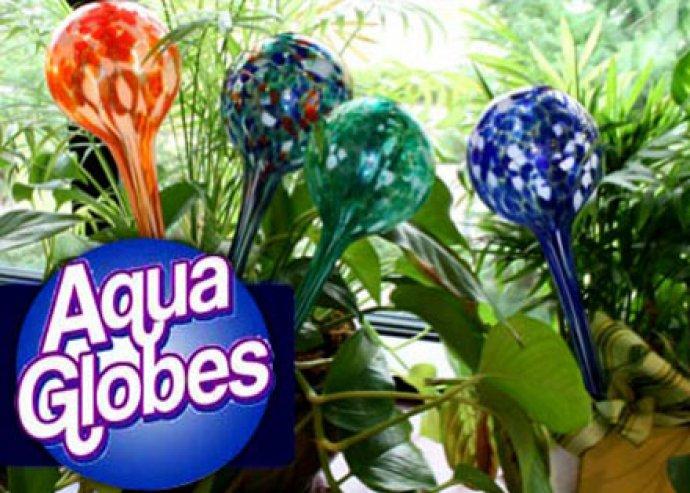 Praktikus és dekoratív Aqua Globe locsoló gömbök, hogy a növényöntözés könnyebben menjen