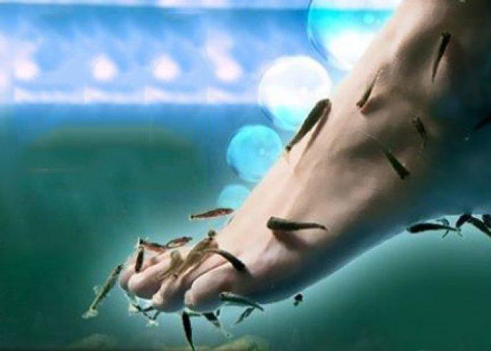 Kényeztesd lábfejed! 15 perces halpedikűr a selymes tapintású lábakért + 10 perc ajándék ráadás