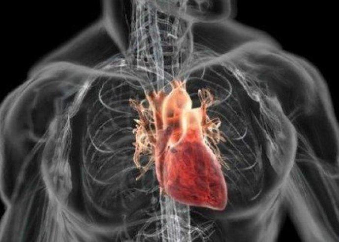 Kapj pontos képet tested állapotáról! AMP villámdiagnosztikai vizsgálat, 125 élettani paraméter feltérképezése