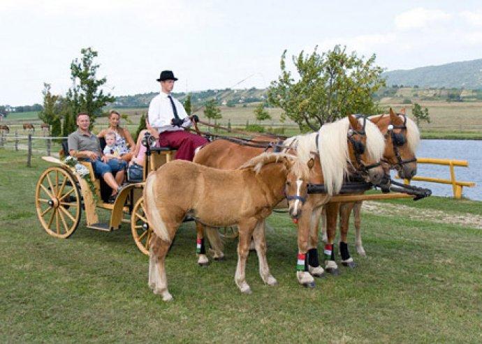 3 nap akár 2+2 főre félpanzióval Zamárdiban, lovaskocsizással és borkóstolóval vagy élményvitorlázással