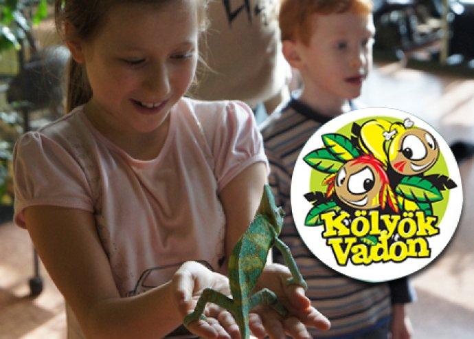 4 óra garantált izgalom a Kölyökvadon Játszóházban – 1 gyerek és 1 felnőtt belépő