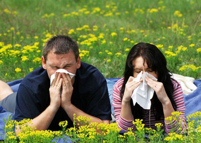 Elektrodinamikai allergiavizsgálat több helyszínen – viszlát allergia!