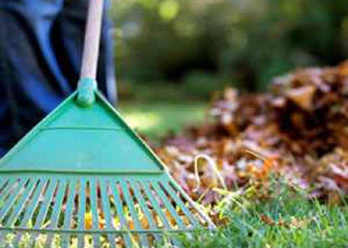 Bízza ránk telke/kertje rendbetételét akciósan!