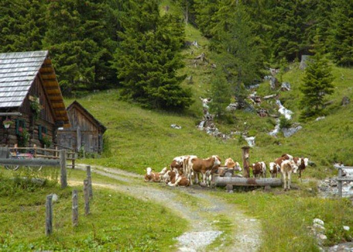 Pünkösd Ausztriába 4 nap reggelivel 2 fő