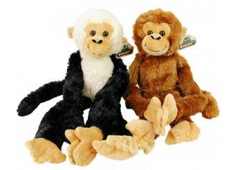 54 cm-es hosszú karú, lógó plüss majom kétféle színben