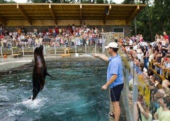 Vár a Nyíregyházi Állatpark és a Skanzen