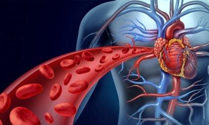 Szív- és érrendszeri állapotfelmérés